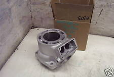 Arctic Cat APV 440 Engine Cylinder New Reman Sno Pro 88B9 No Core Required