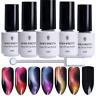 5Pcs/Set 5ml 3D Chameleon Cat Eye Soak Off Nail Art UV Gel Polish Magnetic Stick