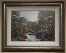 Original Irish Art Oil Painting MONEYCARRAGH RIVER, DUNDRUM by DAVID OVEREND