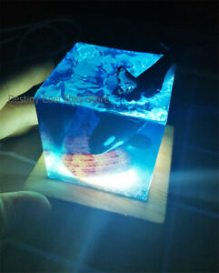 Handicrafts Resin Cube Creative Gift Ocean Ornament Seashell Whale Nightlight