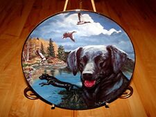 Town And Country Dog Series Black Labrador Lab Plate