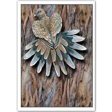 © ART - Spotted Turtle Dove - Tail - Original wildlife Bird Artist Print by Di