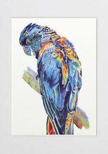Birds Original Art Artist