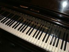 BÖSENDORFER 170cm Flügel Stutzflügel Grand Piano Pianofort Klavier Salonflügel