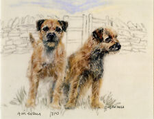 BORDER TERRIER DOG FINE ART LIMITED EDITION PRINT - Brace in a Field