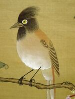 CHINESE PAINTING HANGING SCROLL CHINA FLOWER BIRD Old VINTAGE PICTURE d831