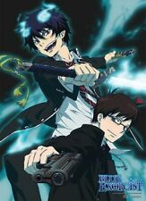 Blue Exorcist anime Rin & Yukio wall tapestry (42.5in x 31in)