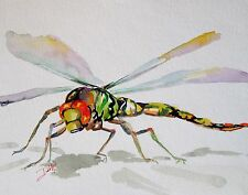 dragonfly insect bug original watercolor painting art 9x12 realism Delilah