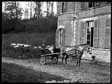 Homme & enfant carriole cheval château - Ancien négatif photo an. 1930