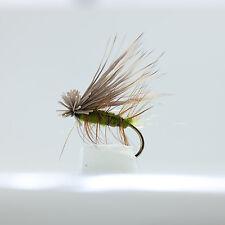 12 CADDIS Sedge Dries  6 patterns Trout Flyfishing Flies - Dragonflies