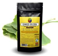Ginkgo Biloba Extract (60 Capsules) - 12500mg Eq - 24% / 6% Lactones + FREE GIFT