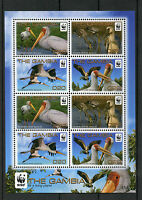 Gambia 2011 MNH Yellow-billed Stork 8v M/S Birds WWF