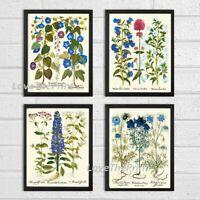 Unframed Blue Flowers Print Set of 4 Antique Vintage Wildflowers Home Wall Art