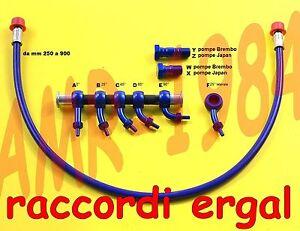Set Hose Brake Special Blue Fittings ergal Red Length Mens 250 A 750