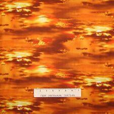 Estrella De Tela Colchas de retazos de coser de Tela Fat Quarters 100/% Algodón folk art 1168 B