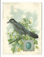 1899 Trade Card Singer Manufacture Co Sewing Machine Oil CAT BIRD