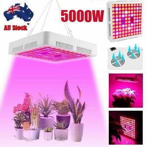 5000W 1000W LED Grow Light Full Spectrum For Veg Medical Flower Plant Panel Lamp