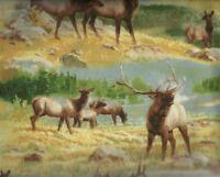Breaking Lights elk scenic wildlife Wilmington fabric