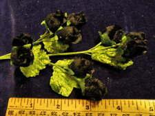 Vintage Millinery Flower Black Velvet w/ 10 Buds for Hat Wedding or Hair Y245