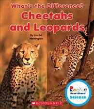 Cheetahs and Leopards