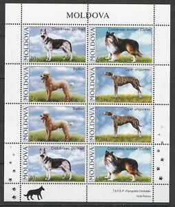 Moldova 2006 Animals, Pets, Dogs, 8 MNH stamps sheet