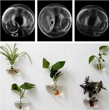 1 x Glass Hanging Hydroponic Plant Flower Vase DIY Wall Terrarium Container US