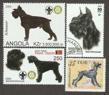 Giant Schnauzer * Int'l Dog Postage Stamp Art Collection*Great Gift Idea*