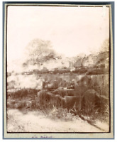 Algérie, Tipaza (تيبازة), Ruines  Vintage citrate print. Tirage citrate  10x