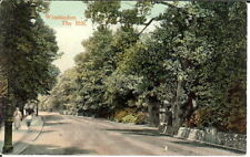 London: Wimbledon, The Hill - Posted c.1910
