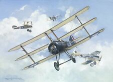 Sopwith Triplane WWI Plane Aviation Aircraft Painting Art Print