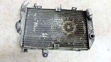 07 Suzuki AN650 A AN 650 Burgman Scooter radiator