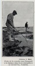1929  --  SAINT GILLES CROIX DE VIE PECHE A LA CREVETTE ROSE A LA BALANCE  3L208