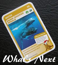 Woolworths<AUSSIE ANIMALS><Series 2 Baby Wildlife>CARD 29/36 Hump-Backed Whale