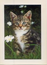 Cartolina Gatto con Margherite Italcards Free Time Collection (573)
