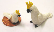 1:12 Scale Large & Small White Cockatoo's Dolls House Miniature Garden Bird C1