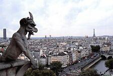 Notre Dame Cathedral Postcard, Gargoyle, Eiffel Tower, Paris, France 92O