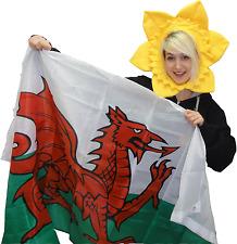 WELSH FLAG & DAFFODIL HAT St Davids wales Cymru red dragon rugby Cymraeg sport
