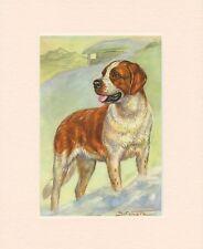 SAINT BERNARD ORIGINAL OLD 1950's DOG ART PRINT READY MOUNTED