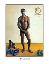 NUDE ART MALE POSTER POSING MAN EROTIC FINE ART PRINT GAY INTEREST CLAUDIO BRAVO