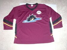 CLEVELAND MONSTERS promotional Hockey Jersey youth Large