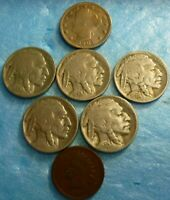 5  Buffalo Nickel Assortment  Coin Collection Plus V nickel+ Indian #5BNVNI