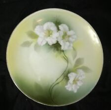 Lovely Lily Azalea  Hand Decorated R S Germany Green White Plate