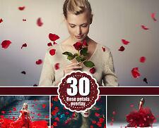 30 Falling Petals Photoshop Overlays rose petals, wedding, love, magic, png file