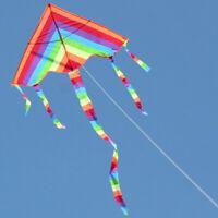 Kids Children Rainbow Dragon Kite Outdoor Summer Handle Line Toy Gift 100x120cm