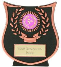Emblems-Gifts Curve Bronze 5th Plaque Trophy With Free Engraving