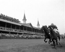 1964 Kentucky Derby Winner NORTHERN DANCER Glossy 8x10 Photo Churchill Downs