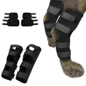 Dog Canine Rear Leg Knee Brace Hock Joint Wrap for Heals and Prevents Injuries