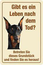 Ein Leben nach dem Tod ? Warnschild Blechschild Dobermann 20x30 cm PC 300/304
