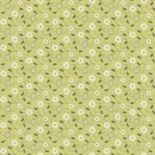Miniatura Per Casa Delle Bambole Rotondo Bianco E Verde Carta Da Parati Fiore