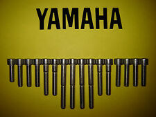 Yamaha TY175 TY 175 175cc Moto Trial Acciaio inox SS Motore Allen Vite Set Kit